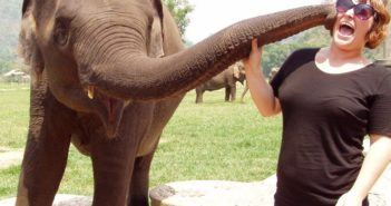 volunteering in Thailand with elephants