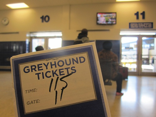 Post image for Traveling on a Budget: Tips for Greyhound Riders