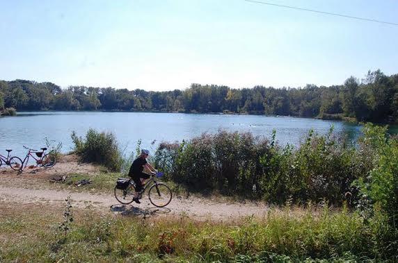 bike field