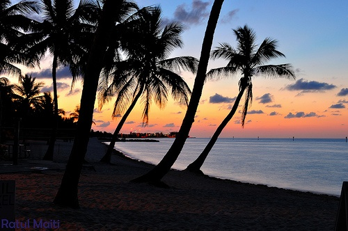 Post image for Free Things to Do in Key West