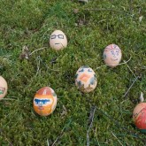 This year's eggs