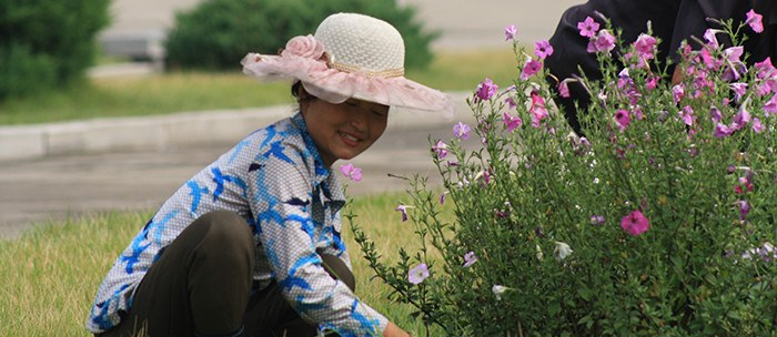 a woman in North Korea cuts grass