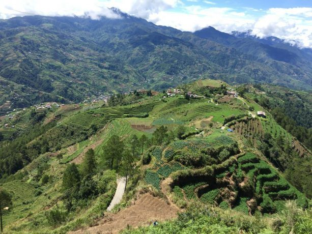 rice terraces in banaue, luzon