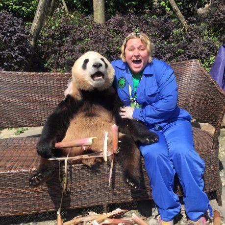hugging a panda in Chengdu. Beating the post travel blues.